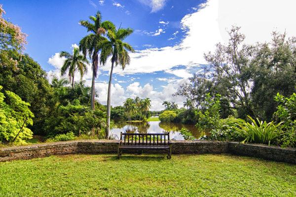 Tropical Fairchild Gardens