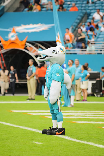 TD, the Dolphins mascot