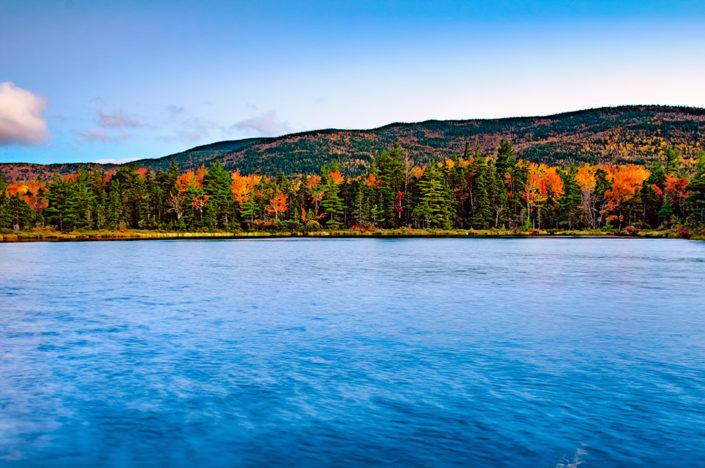beaver pond white mountains