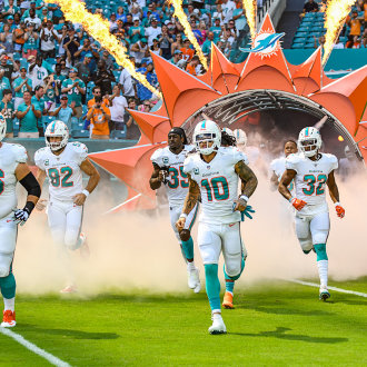 Miami Dolphins Entrance